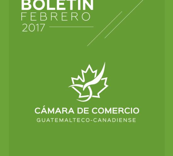 Boletin-febrero-2017