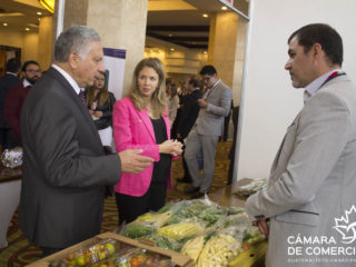 Business-Oportunity-Day-2017-00061