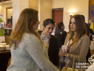 Business-Oportunity-Day-2017-00066