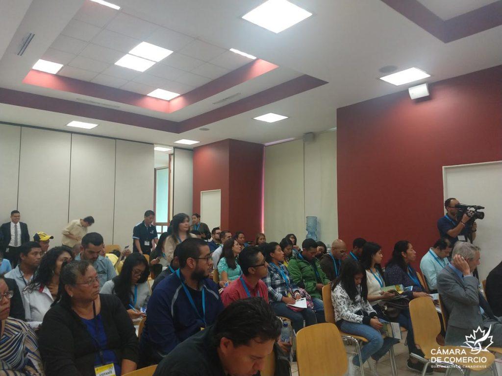 Cámara de Comercio Guatemalteco-Canadiense | Temporary Jobs